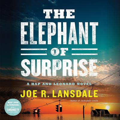 The Elephant of Surprise by Joe R. Lansdale audiobook